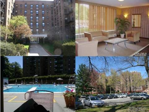 Huge Studio (Largest In Development), Freshly Painted, Low Maintenance, Lots Of Sunlight (Windows In Every Room) And Closet Space, Eat In Kitchen!  Across From Lots Of Shopping.  Express And Local Buses To Nyc Subways, St. Johns, Queensboro College, Alley Pond Park And More.  Free Parking Sticker! In Ground Pool!  Fantastic Location.