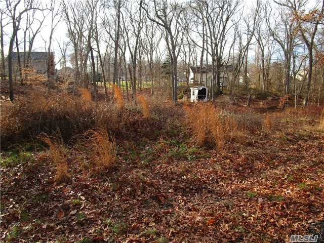Cleared .69 Acre Secluded Property Adjacent To Protected Woodland Area Of Wildwood State Park. Build Your Own Getaway. Just Steps Away From Hiking Paths And A Bike Ride To The Beach And Farms. Newly Paved Road With Water And Electric. Expired B O H Approval And Survey.