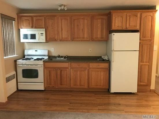 Updated 1 Br In Very Convenient Part Of Farmingdale. Unit Has Residential Views. . Low Maintenance Incl Gas For Cooking And Wth Star Its Approx $488/Mo. No Pets Sorry. Storage Area And Bike Room In Basement. Bldg Offers Buzz In System For Security And Unit Comes With 1 Parking Space Addl Night Parking In Back.Owner May Hold Financing With Large Down Payment (30%or More)