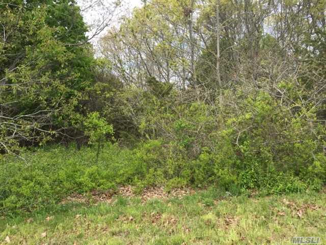 Build Your Dream Home On This Waterfront Acre Plus Parcel In Wilcox Farms