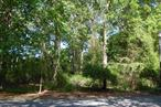 Beautifully Wooded Building Lot In The Landings At Harts Cove, 400 Feet From Cul-De-Sac, 1000 Feet From Harts Cove; Winter Water Views; East Moriches Schools, Choice Of 3 High Schools.