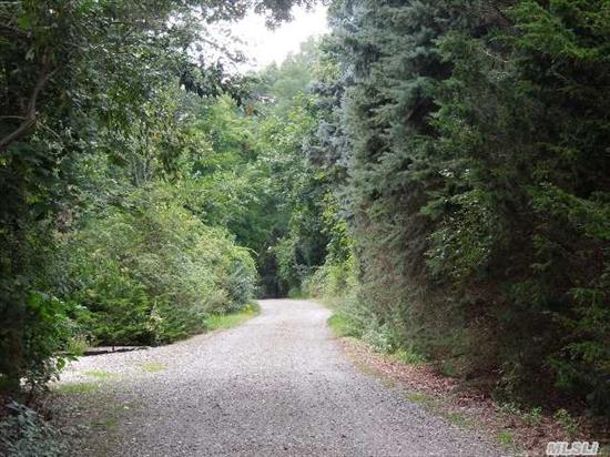 Affordable Wooded Buildable Lot. Build Your Dream Home.