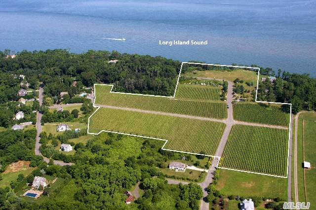 23 Acres Total, Includes 11.5 Ac Vineyard And Separate Vacant Lot
