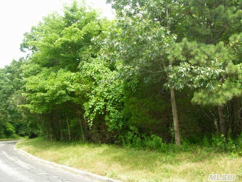 Beautiful Wooded 1.04Acre In Exceptional North Shore Community. Walk To Beach,  In The Heart Of Wine Country. Silver Beech Estates Has All Underground Utilities. Property Has Majestic Silver Beech Trees.