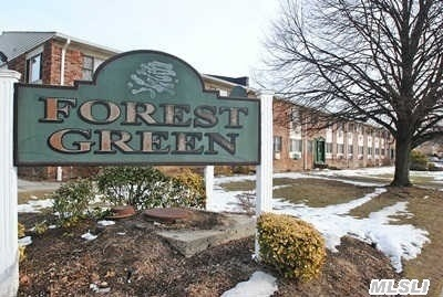 This Is The Opportunity For A Gorgeous 1-Bedroom Deluxe Model In The Forest Green Complex. This        Offers All A Buyer Could Want. Bathroom Completely Gutted To Studs And Renovated In February! Gorgeous Kitchen With Stainless Steal Appliances. Beautiful Hardwood Floors Throughout Whole Unit. Brand New Windows Installed In Last Few Weeks. New Moldings Throughout