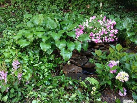 Back Garden Beyond Deck