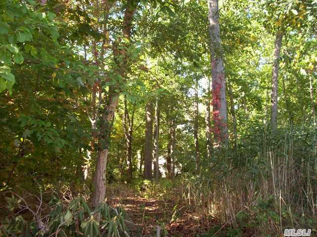 Wooded Level Lot With Waterviews. Access From 2 Sides. Steps To Boat/Kayak Launch.