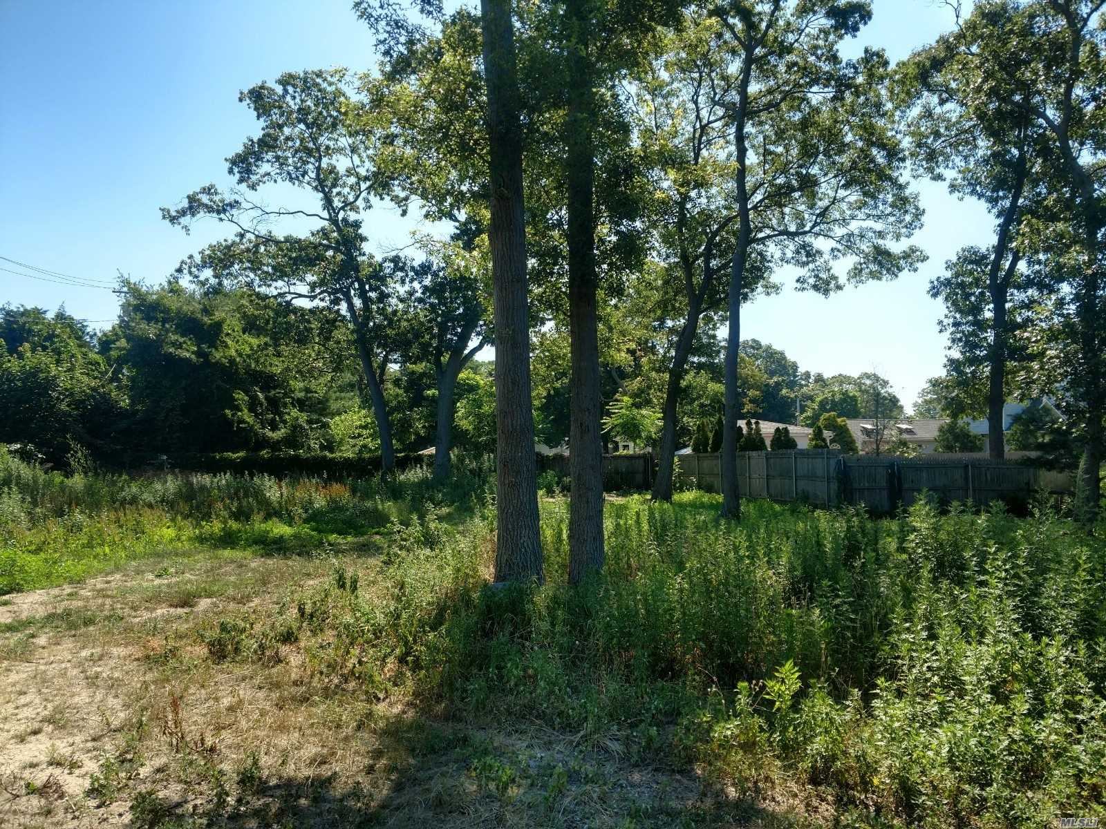 Vacant Building Lot In Scorching Hot Patchogue Village With Approvals Already In Place! Seller Has Village Planning Board Approval And Suffolk County Department Of Health Approval. All Utilities Are Already In, Including Water Main, Electric, And Even Sanitation System Is Installed Already. Plans Available Too. Start Digging Now!