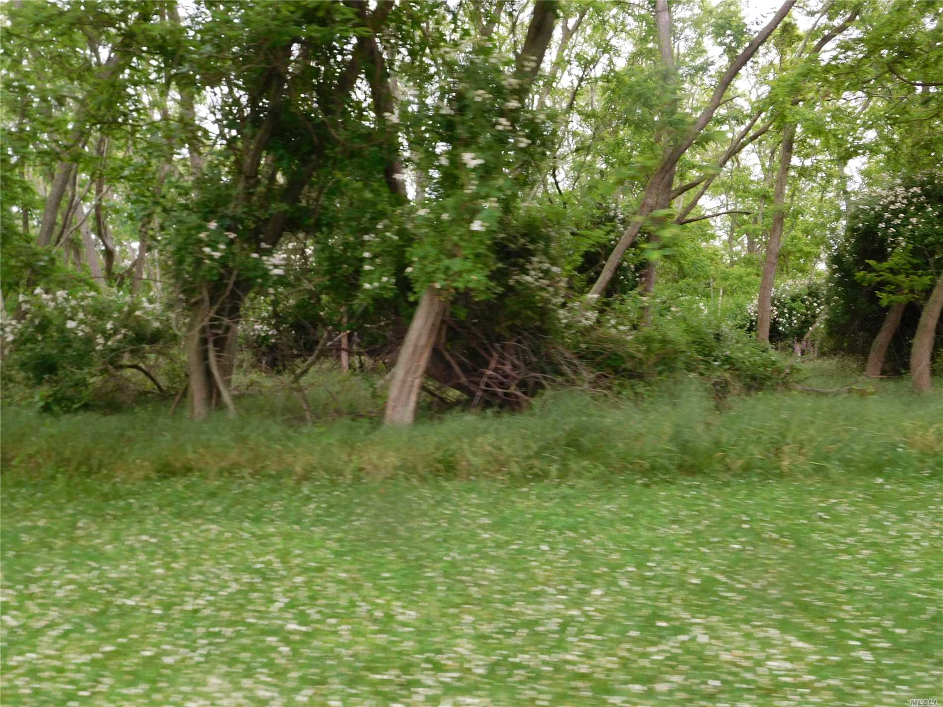 Beautiful Wooded Building Lot In Rolling Woods! Deeded Beach Rights. Build Your Dream Home Here! Includes Home At 18 Linda Lane East