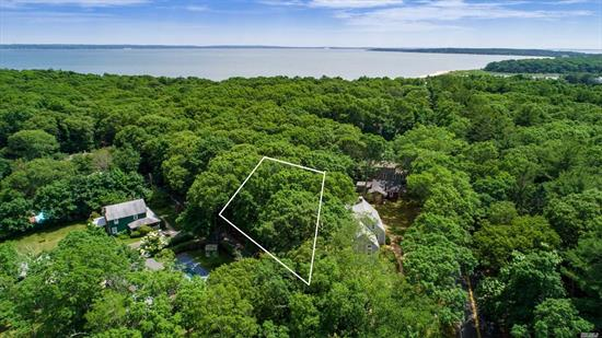 Great Location! Steps To Bay Beach - South Harbor Park Community Beach. Half Acre Property -Residential Lot. Lots Of Possibilities!!!