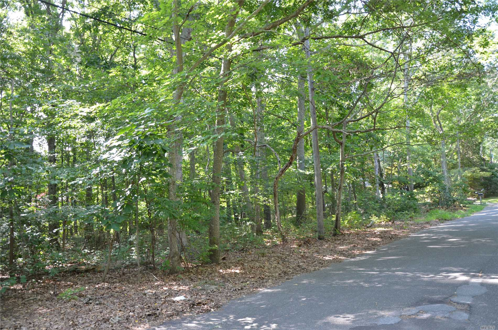 Wooded Level Lot Within 4/10 Of Mile Of Mccabes Beach.