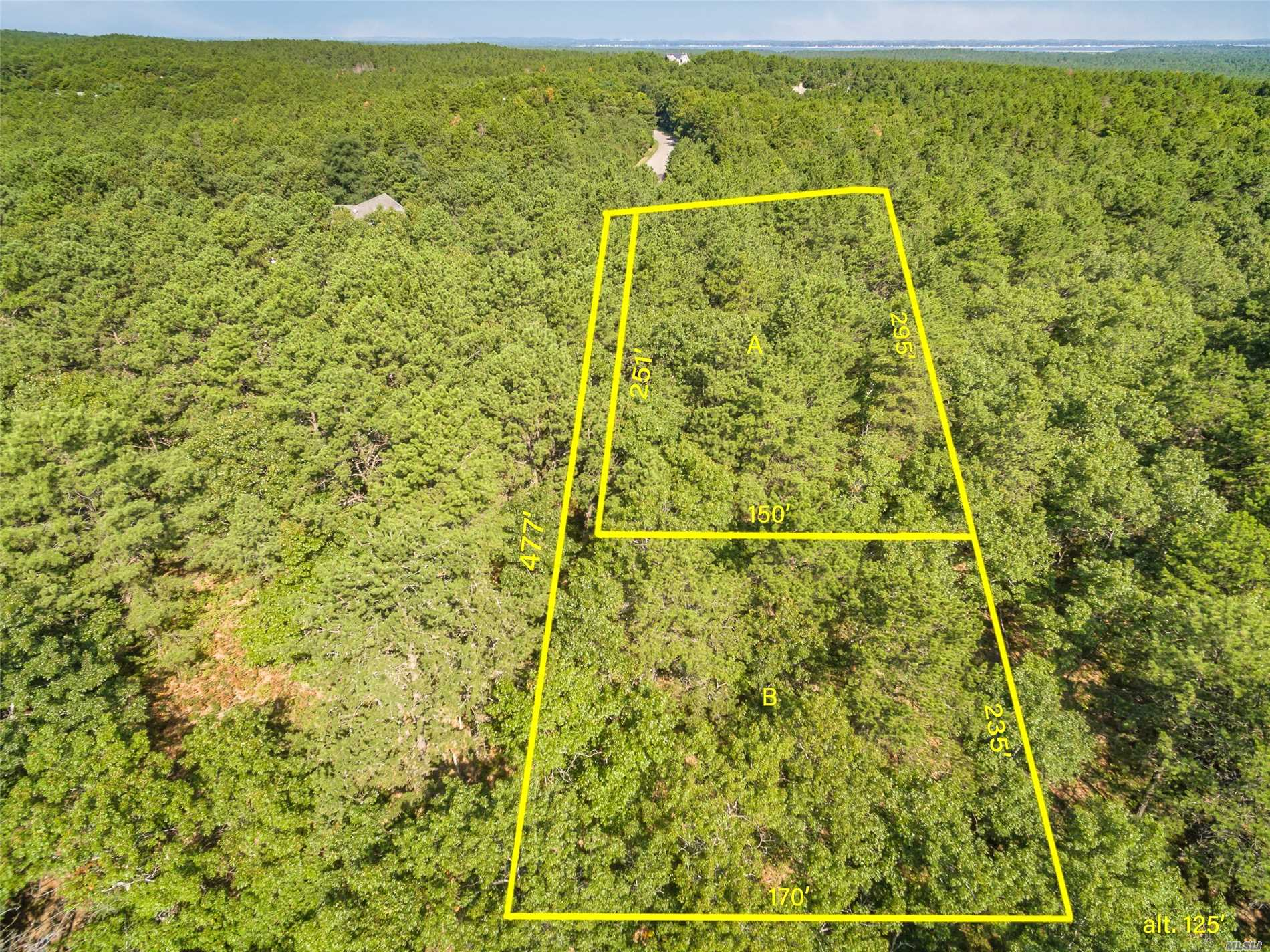 Beautiful Wooded 1 Acre Lot Adjoining A 16 Acre Preserve On One Of The Highest Points In Southampton Pines. Build On One Lot Or Buy Both Lots And Make A Family Compund. Close To Hampton's Beaches, Restaurants And Shopping. Easy To Commute To The City.
