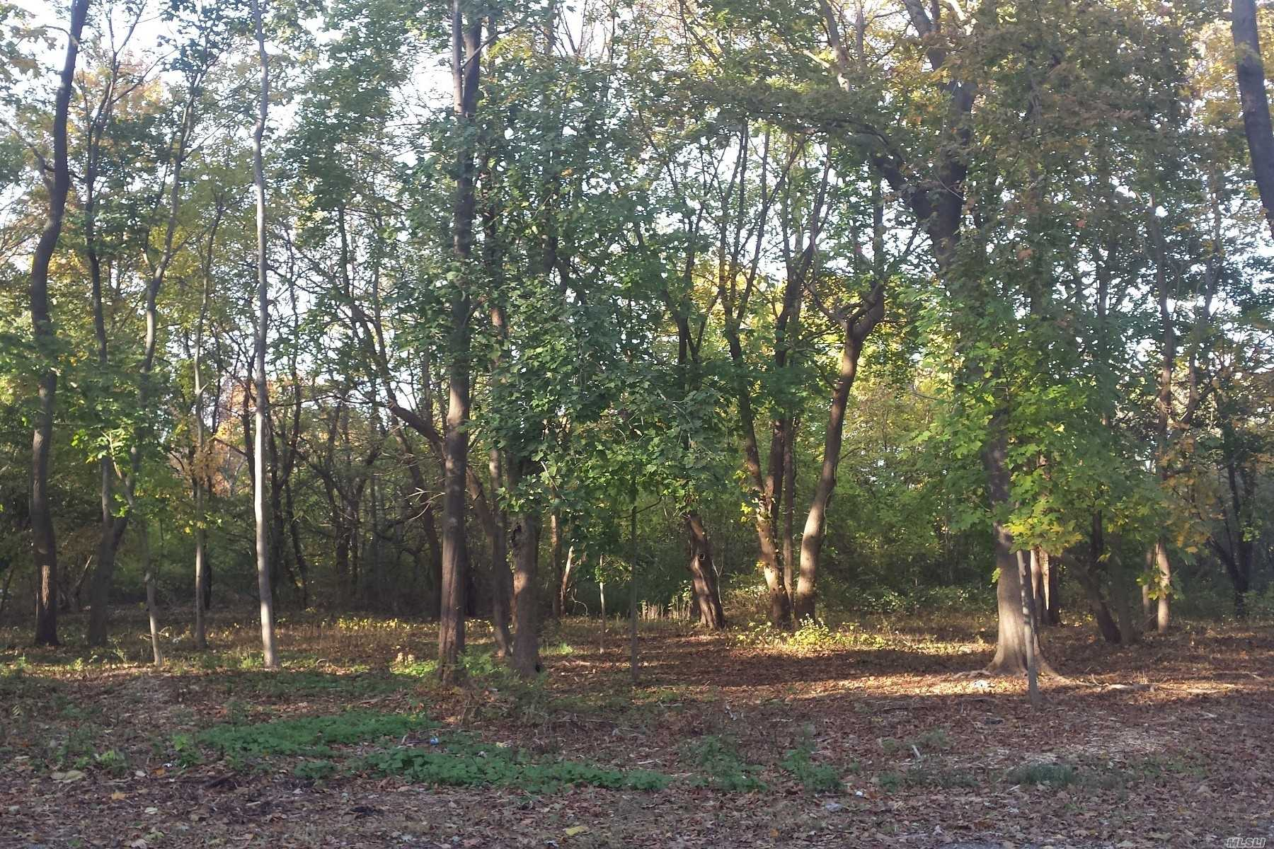 Opportunity Presents Itself With This Undeveloped 2.38 Acre Parcel In The Village Of Old Westbury. Centrally Located, It Features Pond Views And A Chance To Build Your Own Custom Dream Home.