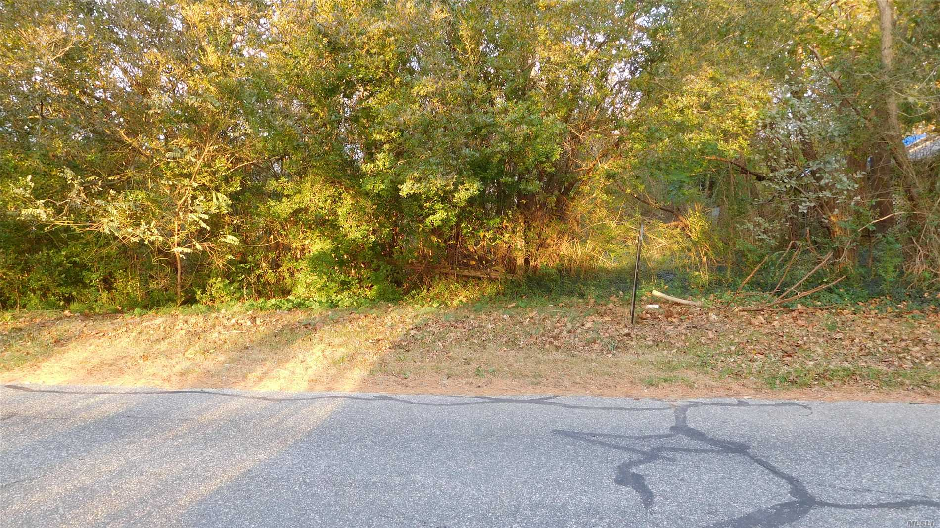 Best Priced Wooded Lot. Public Water And Electric Available