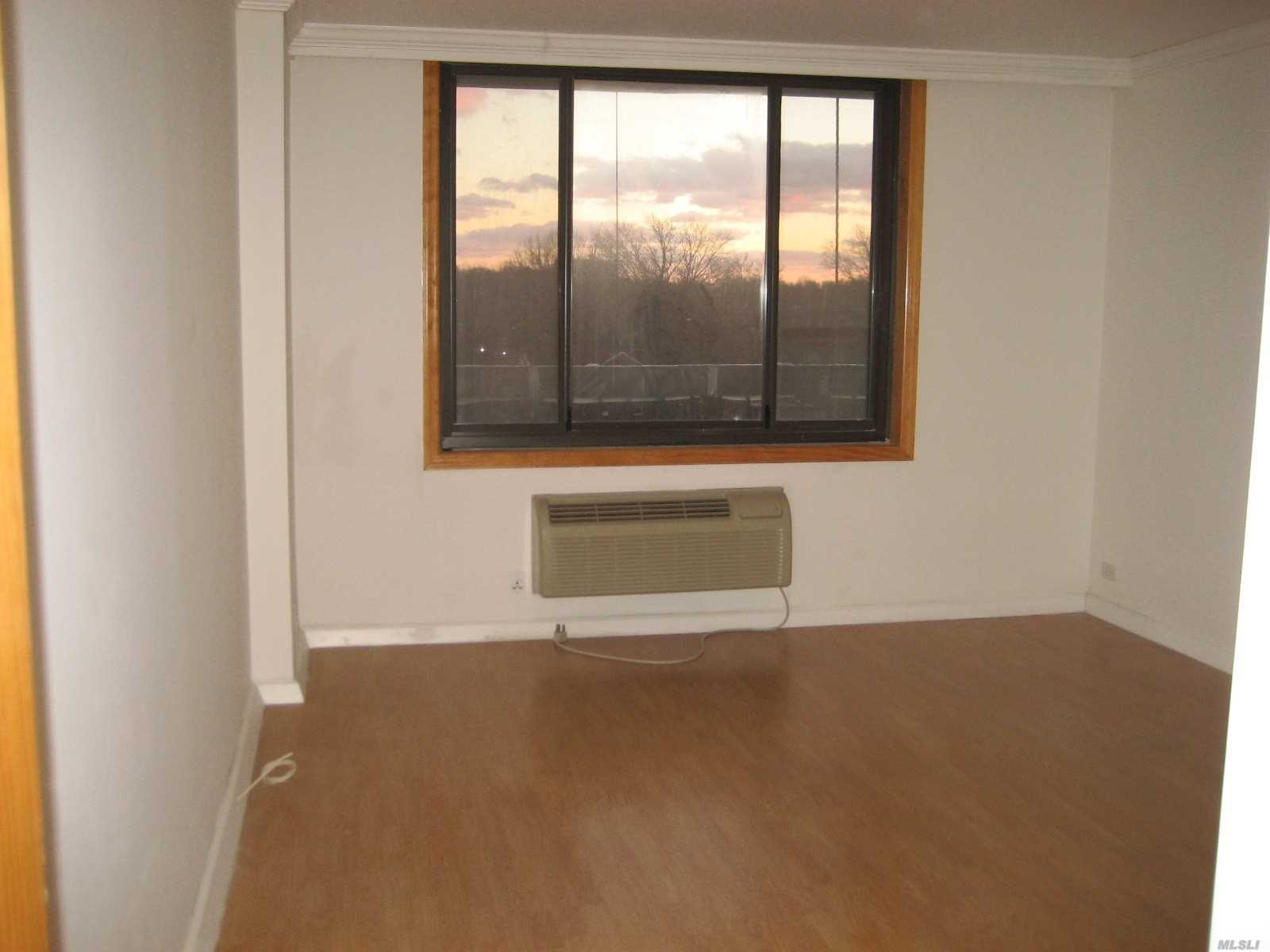 Beautiful Apt With Large Balcony, Doorman, Pool, And Gym, Convenient To St Johns University.