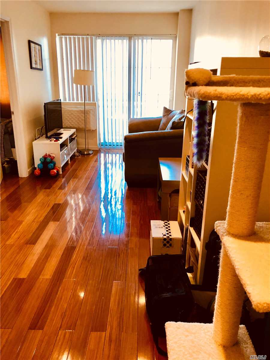 Beautifully Maintained Condo With Ample Windows And Closets, W/D In Unit Elevator Building. Only One Tenant Occupied, Was Kept Immaculate. Recessed Lighting Throughout Unit, Has Balcony And Extra Shared Closet In Hallway With Other The Other Unit On The Floor. Steps Away From The 7 Train, 15 Minutes To Grand Central Station, Plenty Of Restaurants And Shops Right Off Queens Blvd.