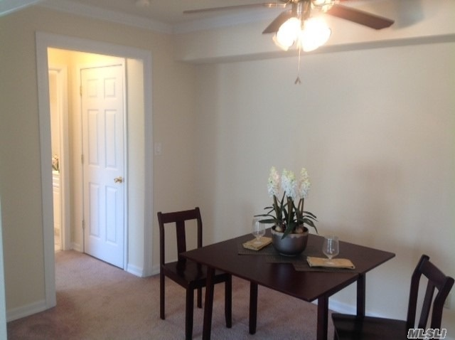 Deluxe, Air-Conditioned 1 Bedroom Apartments With Private Entry. Heat & Hot Water Included. Updated Kitchens W/New Appliances Including Dishwasher, Some W/Carpeting. Some W/Wood Floors. Window Treatments. Laundry Facility. Near Lirr, Sunrise Hwy & Southern State Parkway. Close To Shopping.