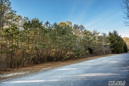 East Quogue - Prime Southampton Pines 1.4 Acre Wooded Land Parcel Located At The End Of A Cul-De-Sac, Potential For 2nd Floor Ocean Views. Wonderful Land Opportunity Along With Excellent Topography To Maximize Building Envelope. Priced To Sell.