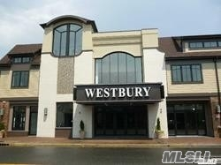 Welcome To The Space At Westbury! This Upscale Apartment Is Located Above The Refurbished Westbury Theater In The Heart Of Downtown Westbury. Hardwood Floors Throughout And Plenty Of Square Footage For You And Your Friends To Enjoy Before The Next Show!