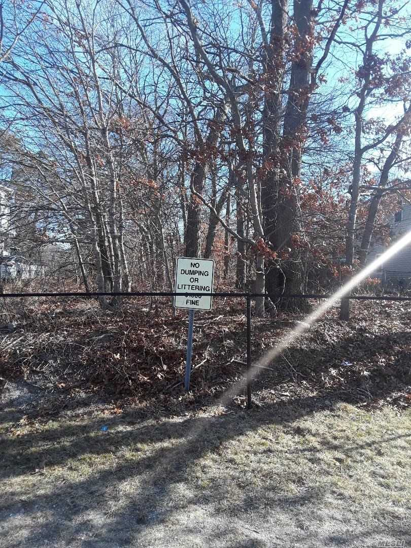Build Your Dream Home On This Beautiful Deep Lot In A Gorgeous Family Neighborhood In The North Part Of Shirley, Ny. No Flood Zone Worries Here.