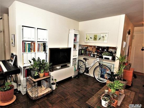 Lg. Studio Apt In Luxury Doorman Bldg, Kit, Lr/Dr, Bath, Alcove Bedroom. Wooden Flrs,  Cac, 24 Hr Doorman, Shopping Arcade On Site W/ Restaurant/Deli/Grocery Store. Beauty Spa, , Pool, Gym, Tennis & Party Rm.Close To All Shopping And Transportation. Desirable Americana Pet Friendly Building At The Towers Of Waters Edge. Total Maint. Including Taxes $691.87  W/O Garage. Dogs are Very Welcome Weight Restriction 40 Lbs