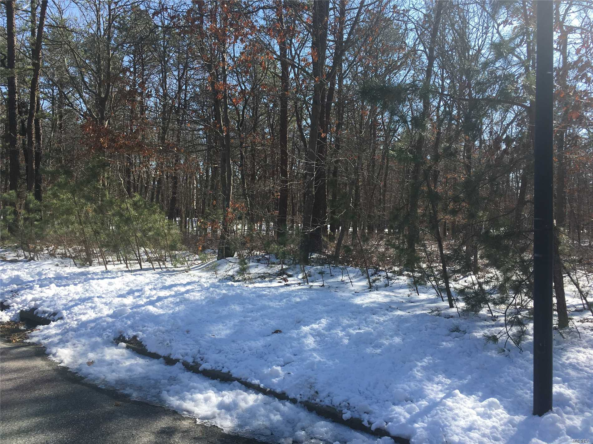 Dream acreage for your dream home. Wooded 5+ acres. Located in the heart of Manorville. Road frontage on Silas Carter and access at end of Davidson Ct. Close to all the east end has to offer.
