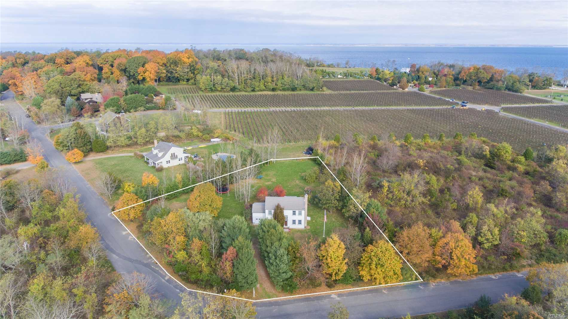 Mint condition, fully renovated home in Hillcrest Estates, Orient. Private and beautifully set on .92 acres, overlooking vineyard, open space and planned conservation easement. New gourmet kitchen, hardwood floors, wood burning fireplace, 1-car garage, mature specimen trees and room for a pool.