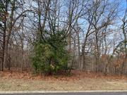 Vacant land, 1 acre wooded, Horse property