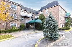 Nice size studio with new carpeting and paint. A/C through the wall. Includes one car underground parking and heat and water. IG pool! $100 for the year. Close to the LIRR, parkways, and shopping.