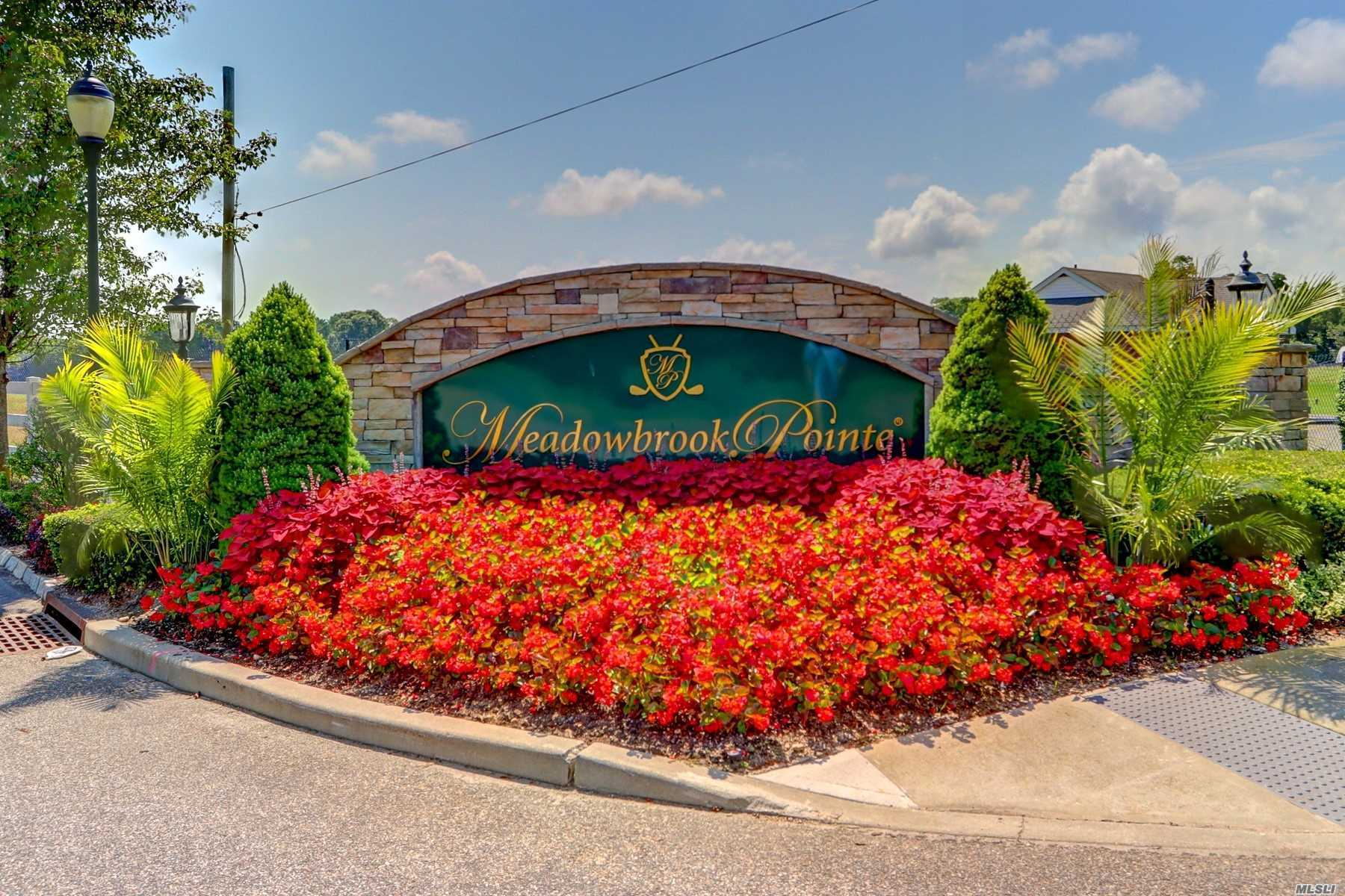 Enjoy your retirement years in this spectacular townhome boasting exceptional Vistas overlooking Pond, Golf Course and Fountains! Best possible location within the prestigious Meadowbrooke Pointe 55+ community. This Greenbriar Model is the largest available and has the bonus of a walk-out basement to an extra patio. The main two floors consist of spacious and gracious rooms with upgraded cabinetry and luxury baths. Throw away your shovels, mowers and high taxes and begin to live!!