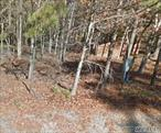 Ideal parcel for your new construction! Over 2 Acres Private, Treed, Flag Lot. Easy ride to shopping, wineries, beaches, North Fork and the Hamptons.
