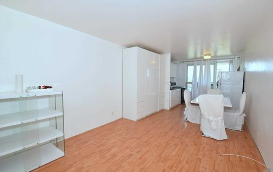 super cool bachelor/bachelorette pad! spacious studio with terrace in pet friendly, 24 hour doorman, fireproof complex with pool!! completely renovated. steps to subway & the best shopping area in queens. sunny & quiet,  with open views. move right into this winner!