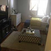 Modern Studio Apartment in the heart of Rego Park , close to trains and buses easy commuting to Manhattan , walking distance to Department Stores in Queens Blvd , minutes from Queens Center Mall , enjoy the quietness of this building , applicants should submit application to the board in order to be considered as a prospective tenant , sufficient income and 700 and up FICO score candidates will be consider. One year lease is being offered , PETS are welcome,  furnished option available .