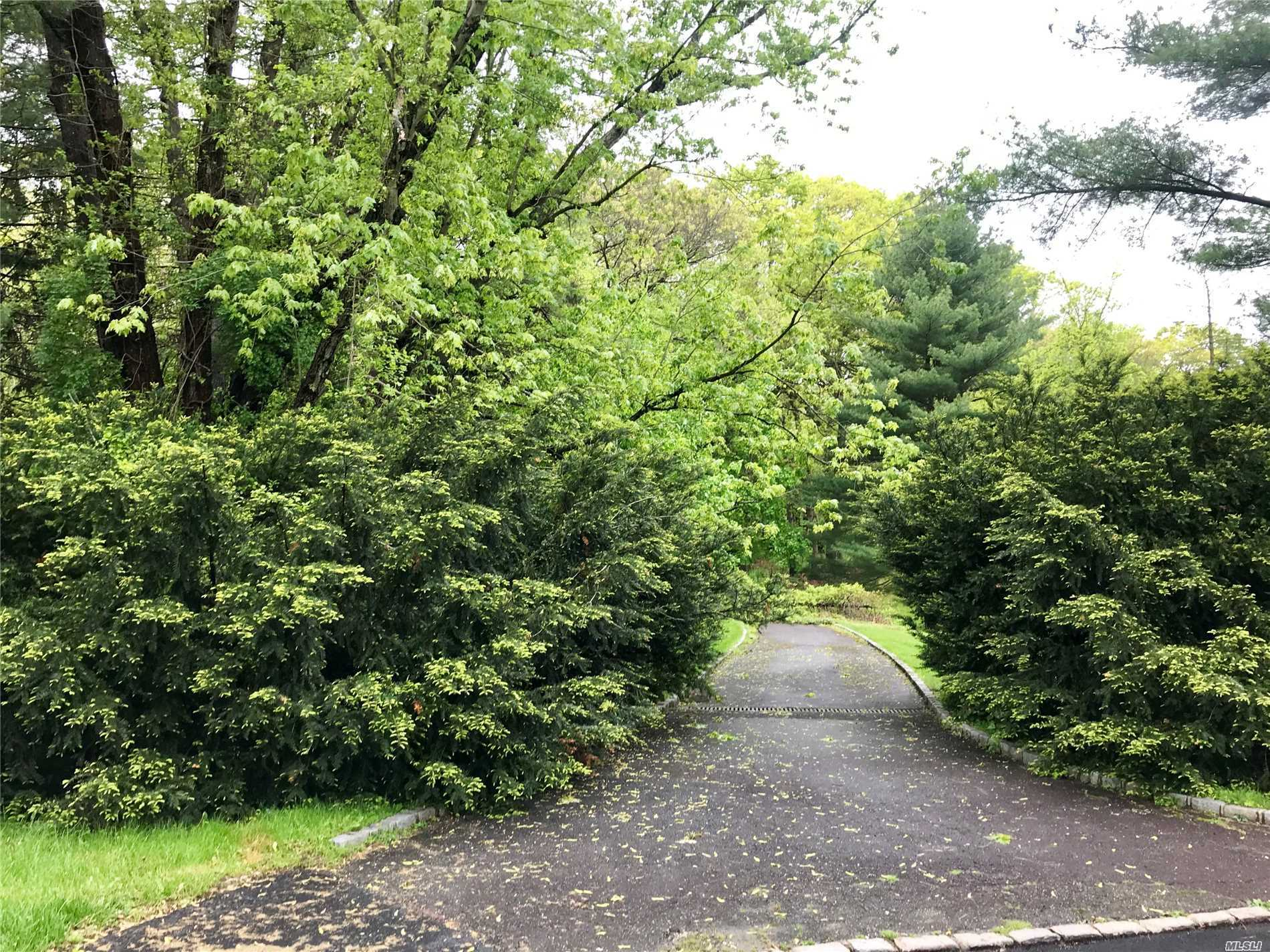 Custom Build Your Dream Home. Spectacular 2 Acre Buildable Lot Situated On One Of The Most Private And Quietest Cul De Sacs In Brookville. Located Within The Award Winning Jericho School District, Robert Seaman Elementary. Present All Offers.