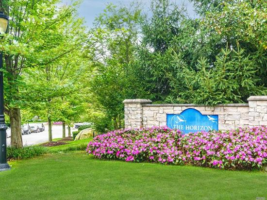 Roslyn. 55+ luxury building in the Horizon of Roslyn. 2 BR, 2 Bath unit, wood floors, updated kitchen. Washer and dryer in the unit. In-ground pool and fitness center included.