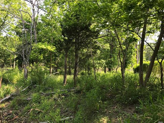 In Coveted Mattituck Water Community. .45 Acre Lot has Water Views of James Creek & Surrounding Wildlife. The Lot Abuts A 25-Foot Easement That Runs Along The Creek To The Peconic Bay. Bay Beach at the End of Camp Mineola. New Survey. Tranquil Setting to Build the House of Your Imagination.