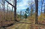 Private, Nearly One Acre Cleared Flaglot ready to Build. Building Permit for 3572 Sq Ft Home w/5 BR, Att 2 Car Garage, Porch, Deck, FP, Ingound Pool, Full basement and Bonus Room over garage. Public water fee paid and line installed to clearing site but not tied into foundation. Electrical Service Line installed to the pole and electrical service permit fee paid.
