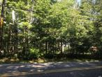 Beautiful Area! Great Investment! Wood Lot 9.5 Acres. Can be Subdivided