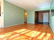 Large Co-Op apt in excellent condition. Great layout with lots of windows and closet space. Monthly maintenance includes heat, water and elec. Addl chage for A/C during June, July and August. Wait list for garage parking ($75 per month). No pets, and no subletting. 3/4 Mi to Woodhaven Blvd. subway. Very close to Q38, Q88, QM10, & QM40 buses.