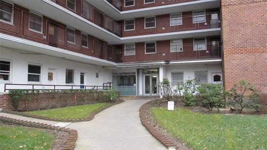 Updated Studio Apartment With  Terrace. Located In The Heart Of Rego Park Only Steps To The Subway, Shops, Rego Mall. The Apt Offers Beautiful Wood Floor, Renovated Kitchen With Loads Of Cabinets. Building Offers 24 Hour Security, Guard At The Door, Laundry Facility, Indoor Parking(W/L), Seasonal Pool And Welcomes Small Pets.