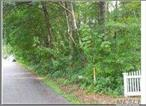 Lot located across from Home at #24 Oak Lane. Wooded Level Lot 225 Foot Frontage by 150 feet deep, Quite Country Lane (.74 Acre).