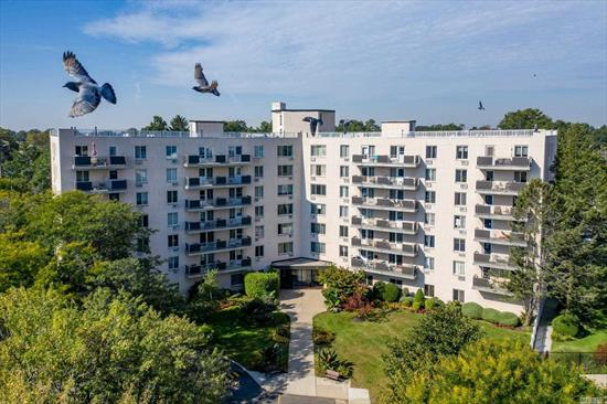 Light, Bright, & Airy 1 Bed/1 Bath Condo Overlooking Treetops! Bamboo Floors Throughout & An All New, HGTV-Worthy Bathroom! Open Concept Kitchen/Living/Dining Room Combination! 3 Huge Closets, ~2 Walk-Ins! Doorman Building, Pets Allowed, In-Ground Pool, Laundry Room & Recreation Room! Maintenance Includes Heat, Gas, Basic Cable/Internet & Parking Spot. Down The Block From Shopping & Village! Diagonally Across The Street From The Westbury LIRR Station. Get To Manhattan In 40 Minutes!