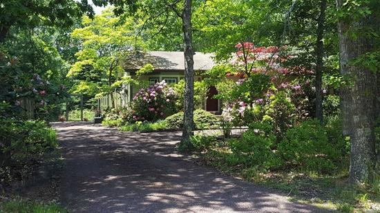 Best location in the Hamptons! Cute, efficient and compact home on a very private lot and very quiet spur road. Backed by nature preserve making trails (hiking, biking) and ponds (Kayaking, fishing) easily accessible. Only 3 miles straight south to the unique Sag Main Beach. 3 mi. north to historic Sag Harbor. Vegetable garden, perennial gardens and diverse landscaping (w/ irrigation) throughout the property. Rustic Cabin and firepit overlook the pool and the forest as an additional getaway.