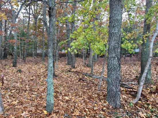 Level Wooded Lot Next To South Harbor Park Community With It's Beautiful Sandy Bay Beach. Great Location On A Quiet Road. The Perfect Place To Build Your Vacation Or Year Round Home.