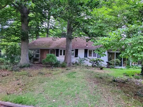 Sprawling Ranch In Desirable Dsoris Woods, Needs TLC, Make It Your Own ! No Heat, No Water.