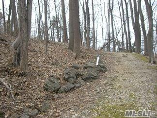 Pristine Build-able lot in Roslyn Schools- shy 1 Acre.