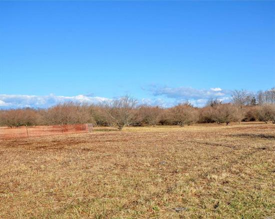 Looking for land to grow, trees, grapes, vegetables? This 17 acres of agricultural land is perfect, the development rights have been sold. Call to make an appointment to view.